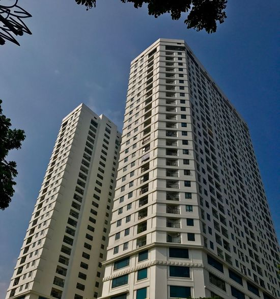 The two buildings Building Exterior Architecture Low Angle View Built Structure Building Sky Tall - High City Office Building Exterior Tower Skyscraper Residential District Window Plant Day Modern No People Tree Clear Sky Nature