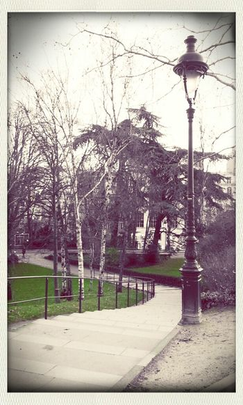 Streetphotography Urban Lamp Green Stairs Colors Black & White Urban Nature Colorsplash Lampadaire Parcs Et Jardins Parisiens