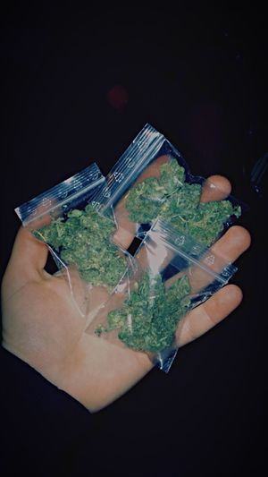 Weedsome - some. Weed