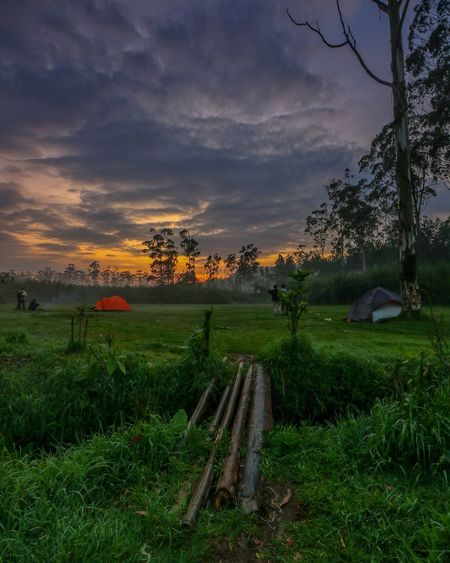 Sunrise Ranca Upas Cloud - Sky Sky Landscape Sunset Field Grass Agriculture Tree Social Issues Outdoors Nature Beauty In Nature Beauty No People Rural Scene Leaf Freshness Water Rice Paddy Day First Eyeem Photo