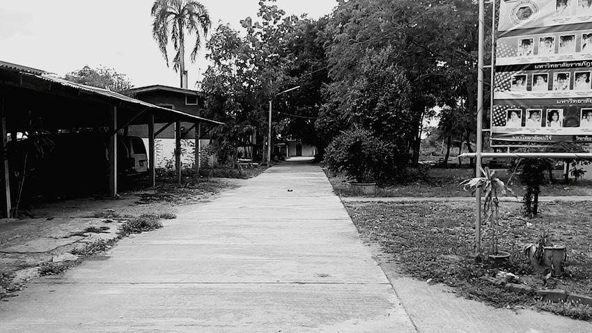Road. First Eyeem Photo