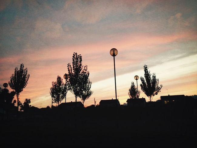 Walking home* Sunset Silhouettes Shapes Walking Around
