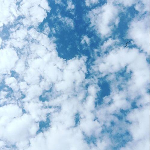 ❤️ Outdoors Sky Sky And Clouds Peace Clouds And Sky Beautiful Shot Hopeyoulikeit