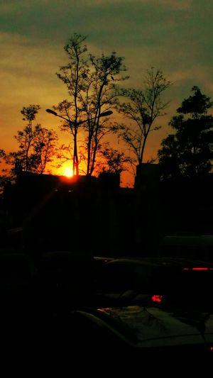 Sunset.. Sunset_collection Sunset Silhouettes Dayend Shot_on_moto_g3 Banglore , India