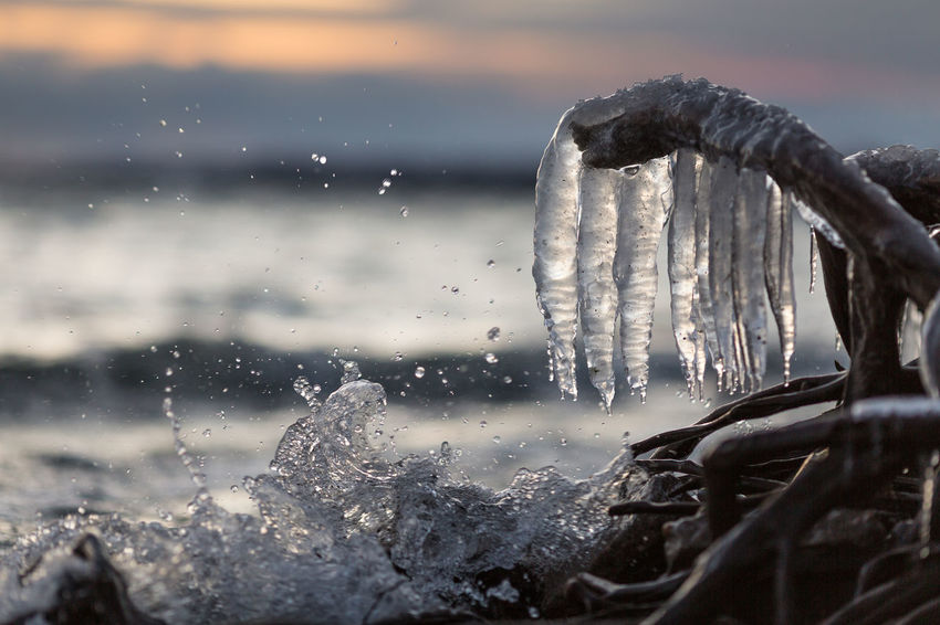 Creature from the lake. The splash kind of looked like a creature's head to me. Ice Cold Temperature Icicles Sunset Canada Lakeshore Lake Cold Clouds Frozen Water No People Nature Social Issues Sea Beauty In Nature Winter Day Outdoors Beach Scenics Sky Freshness Close-up
