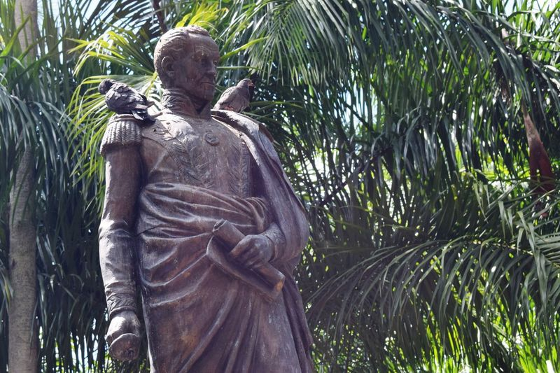 Libertador Simón Bolívar Sculpture Human Representation Representation Art And Craft Statue Plant Creativity Park