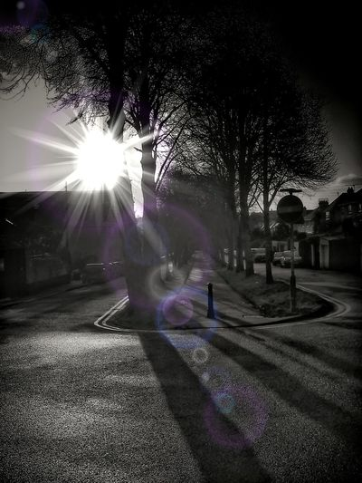 Lens Flare Dodge And Burn Black & White Creative Light And Shadow