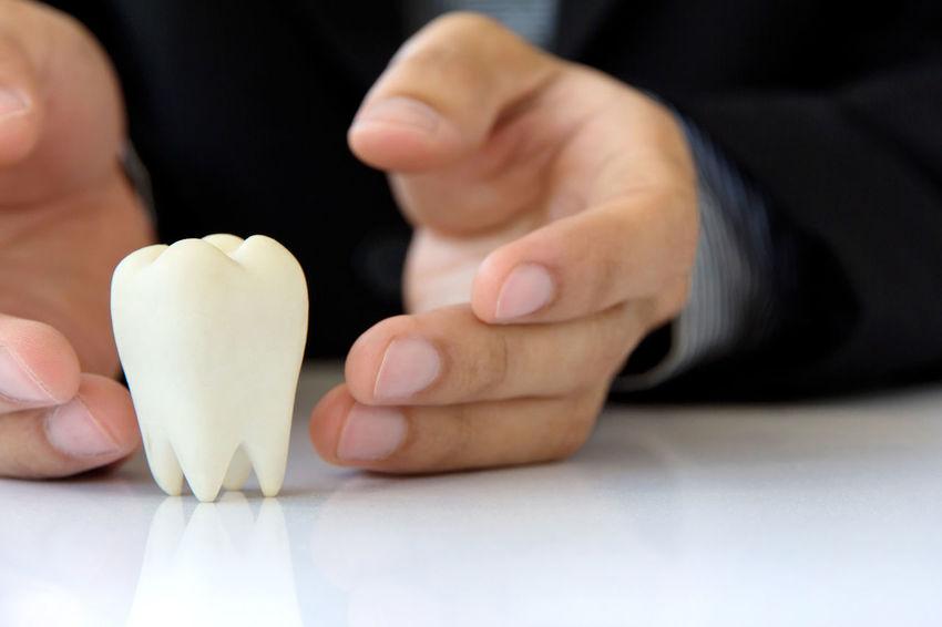 concept image of dental Dental Dental Hygiene Dentist Dentistry Conceptual Photography  Concert Dental Health Health Healthcare And Medicine Healthy Human Body Part Human Hand Teeth Teeth Model