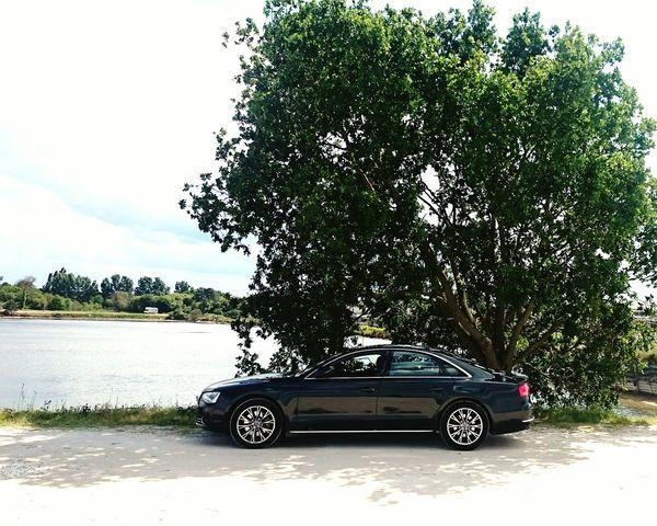 Car Transportation Nature Audi ♡ Audia8
