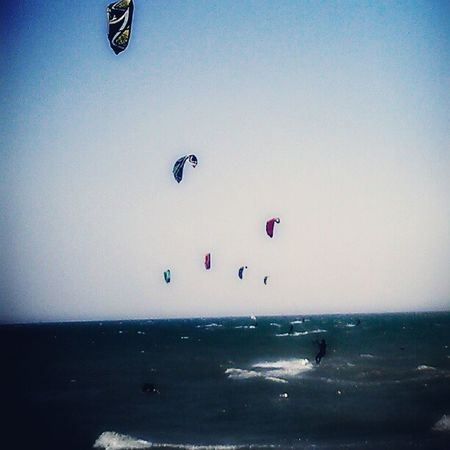 It's a kite world. Kitesurf Instasport Instamood Instamoment instagramhub instacool sun sea beach mare summer estate sky igerstoscana igersitalia wind