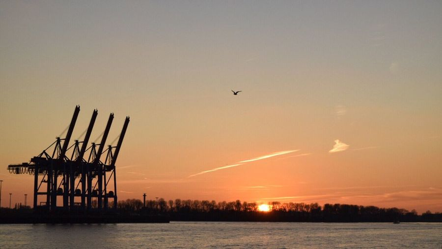 Low angle view of silhouette cranes by elbe river at sunset