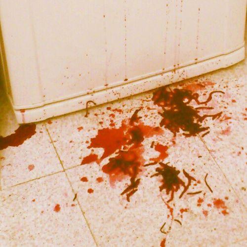 Accidentes Blood Remolacha