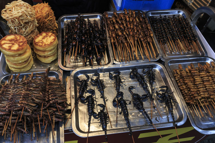 Chengdu, China - December 12, 2018: Insects and scorpions sold in a street market in Chengdu Chengdu China ASIA Street Food Insect Scorpions Food Stall Food Food And Drink Market Retail  For Sale