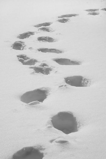 Snow ❄ Footprints Footprints In The Snow Textured  Hello World Enjoying Life Taking Photos After Snowing Day From My Point Of View Black And White Monochrome January 2018 Winter Snow Cold Temperature No People Outdoors