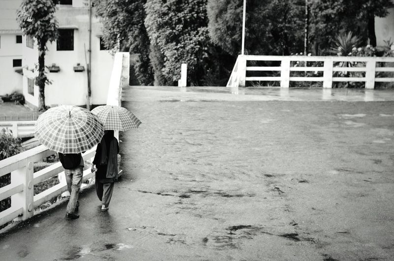 Rear view of man and woman with umbrella walking on street