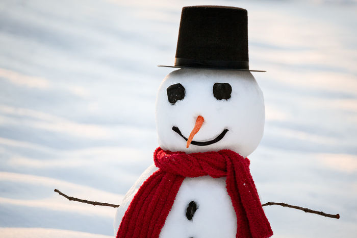 Cute snowman wearing black top hat, red scarf, coal eyes and buttons and carrot nose on a snowy winter day Winter Wintertime Carrot Close-up Coal Day Eyes Focus On Foreground Human Representation No People Outdoors Red Scarf Scarface Sky Snow Snowman Snowman⛄ Top Hat