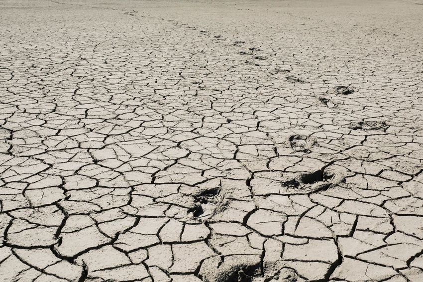 FootPrint Arid Climate Barren Climate Cracked Day Desert Dirt Drought Dry Environment Environmental Issues Extreme Terrain Field Full Frame Land Mud No People Outdoors Scenics - Nature Textured
