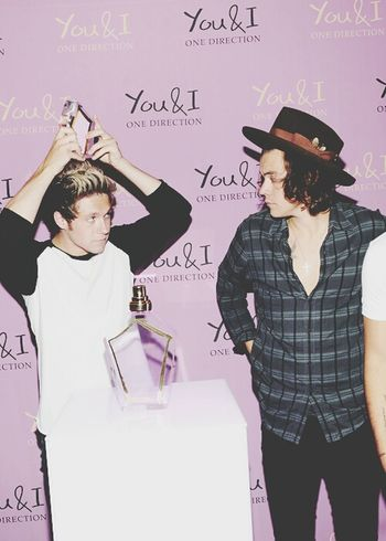 Niall Horan Harry Styles One Direction Narry Storan
