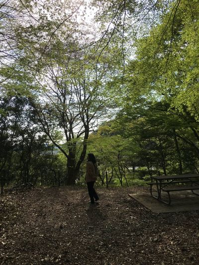 Darkness And Light Forest My Wife One Person Outdoors Tranquility Tree Woods