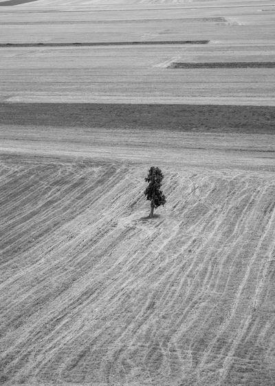 High angle view of desert land on sand