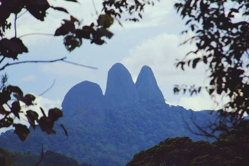 Seeing The Sights Borneo Sarawak BARIO Photooftheday Mountains OnTopOfTheMountain Green