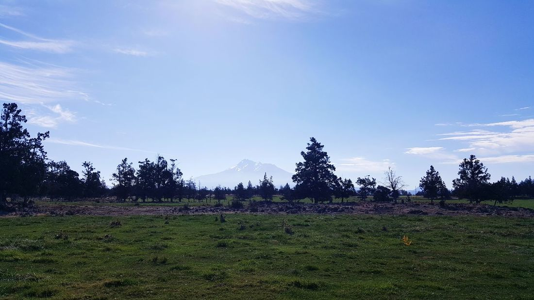 Mt shasta. Mt Shasta Sky Clouds And Sky Beauty Volcano Lost In The Landscape