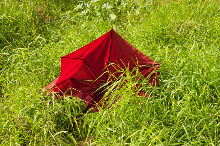 Red Umbrella After The Rain Stopped Conminade Nature Green Color Nature Outdoors Red Umbrella☂☂