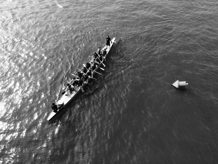 Nautical course training Competition Cooperation Day Group Of People High Angle View Men Mode Of Transportation Motion Nature Nautical Vessel Outdoors Real People Rowboat Rowing Sea Sport Teamwork Transportation Water Waterfront
