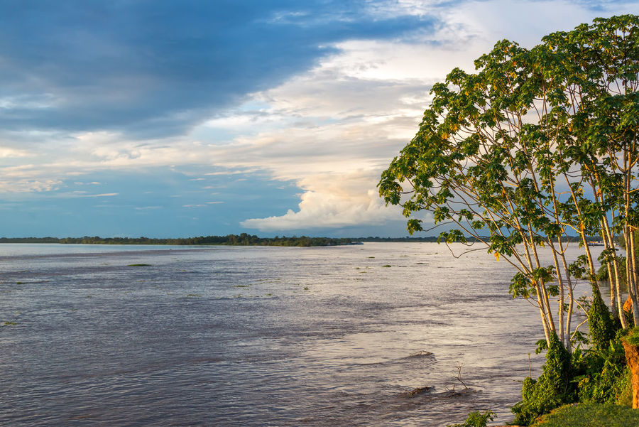 View of the Amazon River near Tabatinga, Brazil Amazon Amazon River Amazonas Amazonia Brazil Cloud Clouds Colombia Jungle Landscape Leticia Nature Nature Outdoors Rain Forest Rainforest River Sky South America Sunset Tabatinga Water