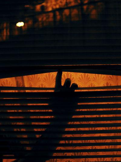 Sunset Shadow Silhouette Human Hand City Sunlight Focus On Shadow