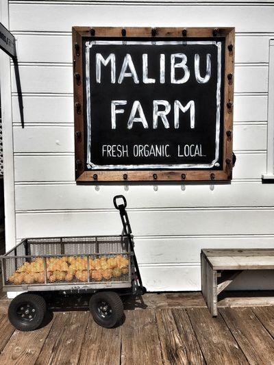 Malibu Farm at Mailibu Beach, California Check This Out