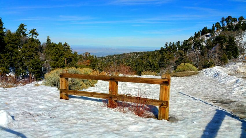winter color Fence Posts Fence Posts Rail Barrier White Valley Trees Mountains Contrast Depth Distance Silence Awe Inspiring Elegant Copy Space Zen Sunlight Beach Tree No People Sky Day Outdoors Winter Shadow Landscape Cold Temperature Snow Scenics Shades Of Winter