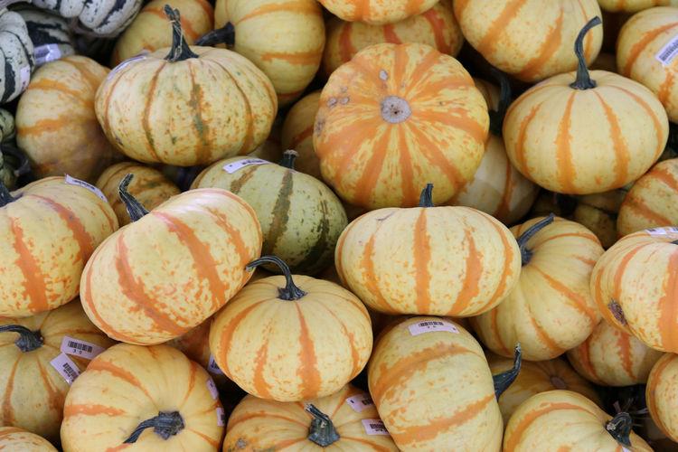 Full frame shot of pumpkins at market