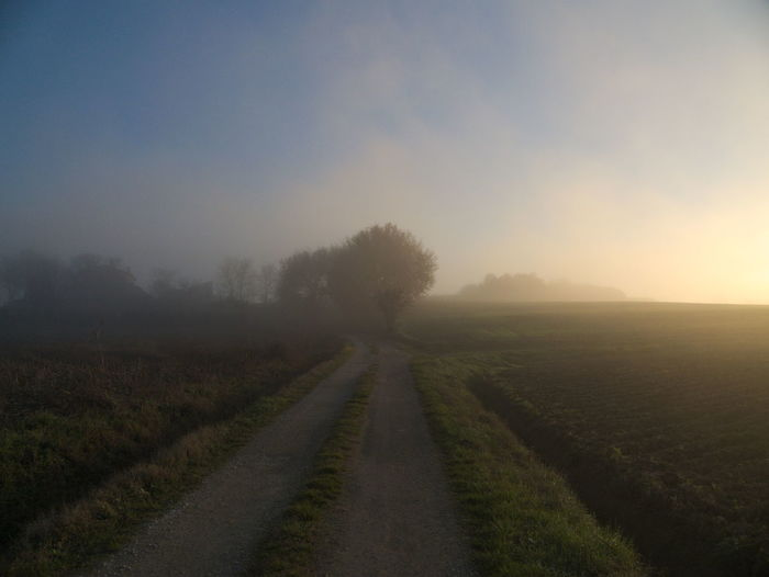 Pathway Amidst Field Against Sky During Foggy Weather