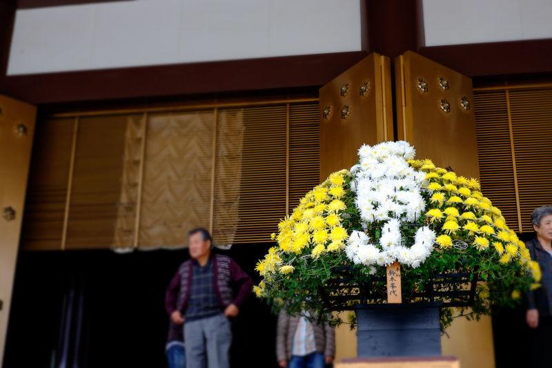 Fresh flower arrangement at narita-san shinsho-ji temple