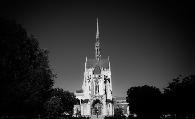 Take me to Church Tree Architecture Religion Building Exterior Place Of Worship Built Structure Low Angle View Cathedral Steeple Sky History High Section Architecture Church Spirituality Growth Outdoors Spire  Day City Tall - High