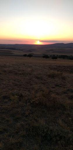 Sunset Arid