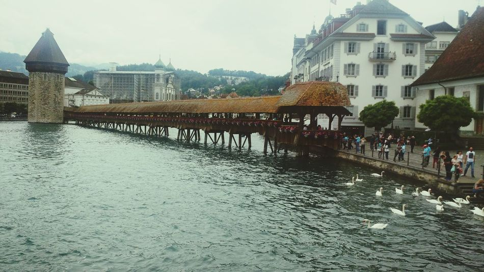 Lake Bridge Switzerland Switzerlandpictures Architecture