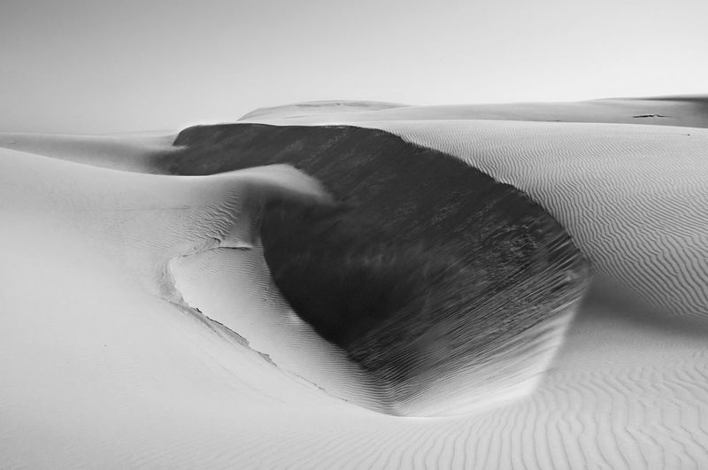 Sanddunes California Highway 1 Blackandwhite Black And White Blackandwhite Photography Black & White Nature Landscape Nature Photography Traveling Travel EyeEm Best Edits EyeEm Best Shots EyeEmBestPics EyeEm Best Shots - Nature EyeEm Gallery EyeEm Nature Lover Landscape_Collection Hiking