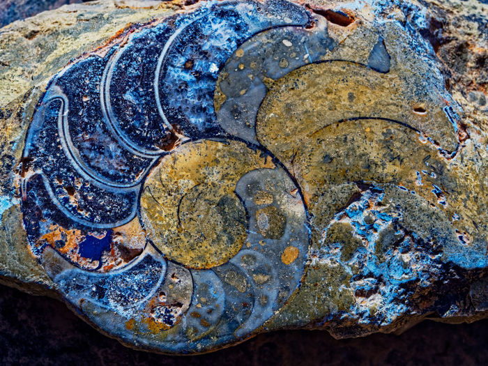 High Angle View No People Solid Close-up Rock Day Nature Rock - Object Outdoors Metal Textured  Weathered History Ancient Old Fossil Land Rusty Detail The Past