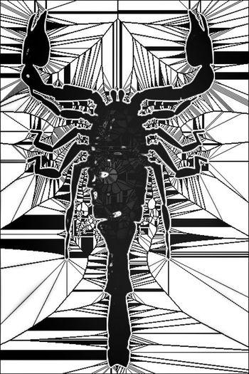 What's Your Zodiac Sign? Blackandwhite NEM Black&white Popart Kunst The Web Masters