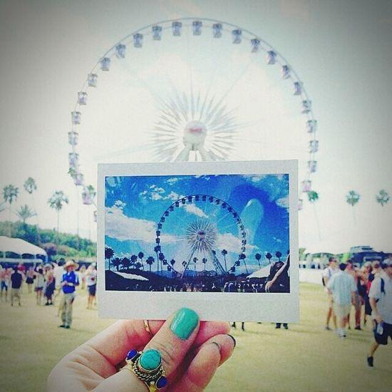 RodaGigante Polaroid Pictures Life Parque De Diversão