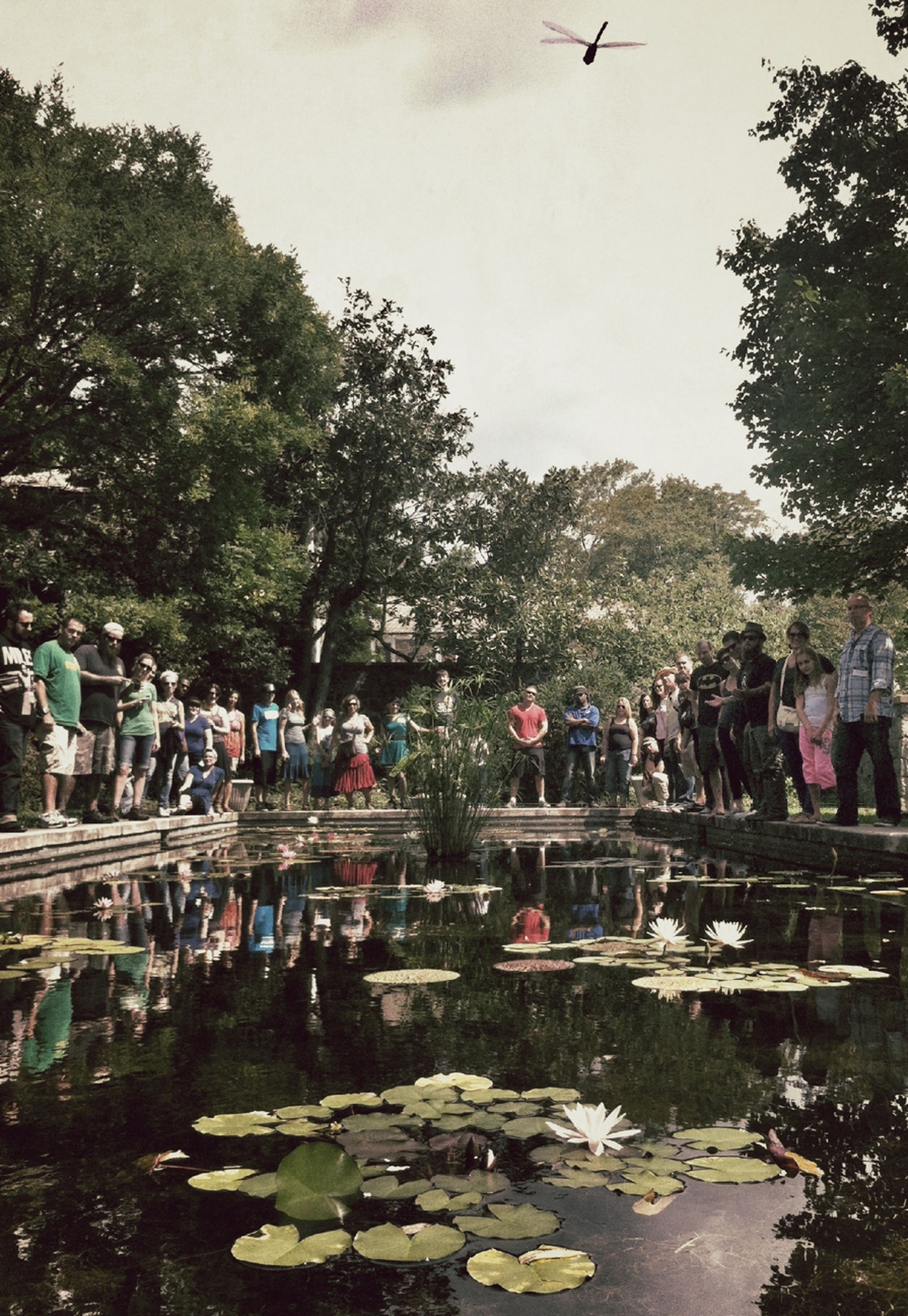 water, tree, bird, lake, reflection, large group of people, animal themes, person, animals in the wild, pond, nature, wildlife, river, men, built structure, day, waterfront, flock of birds