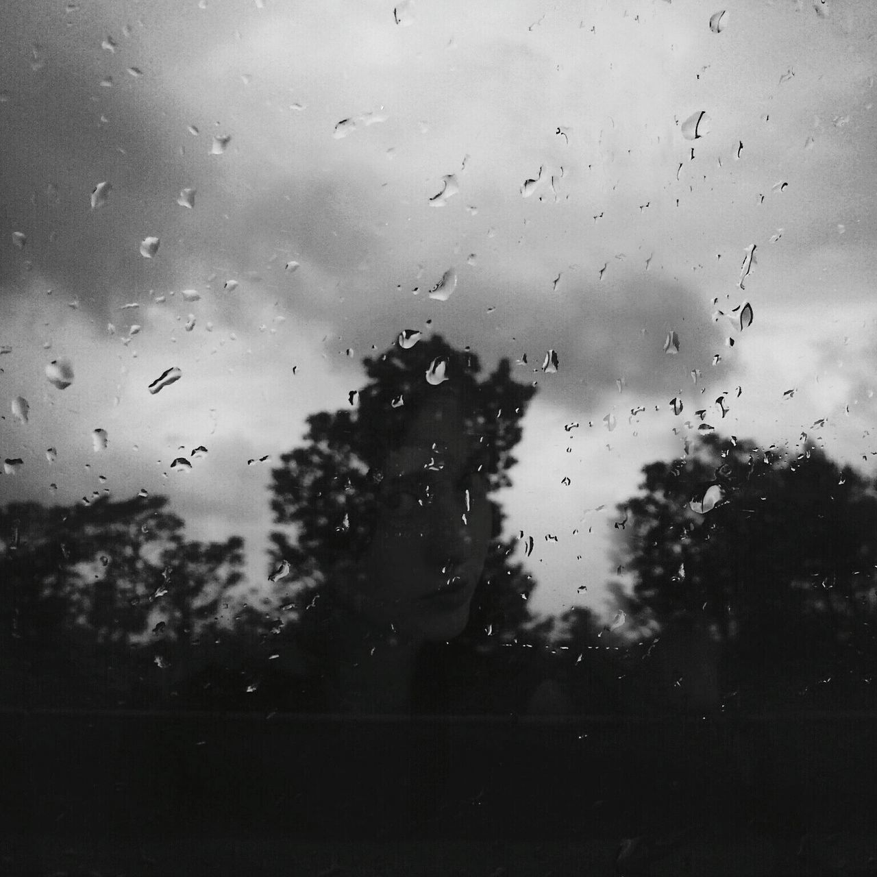 drop, window, transparent, rain, wet, glass - material, raindrop, water, sky, weather, no people, rainy season, focus on foreground, indoors, looking through window, day, nature, close-up, tree