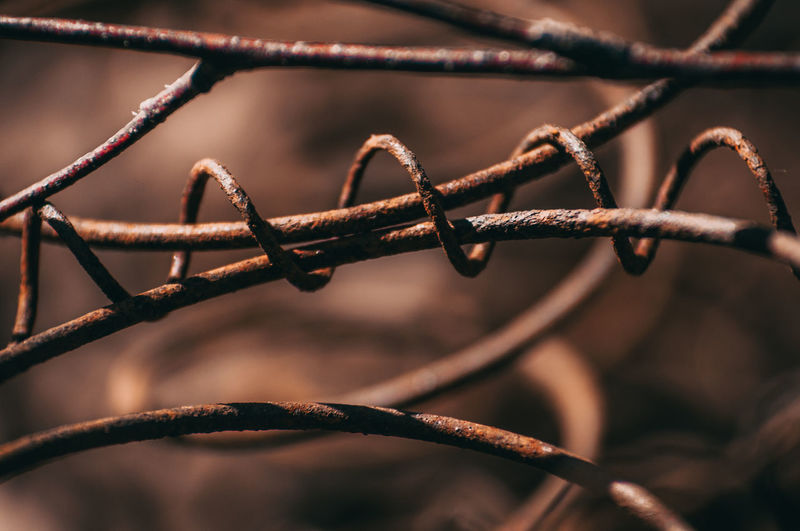 Close-up No People Wire Metal Focus On Foreground Fence Protection Security Safety Selective Focus Boundary Barrier Nature Outdoors Day Barbed Wire Sharp Rusty Twisted Sign Tangled