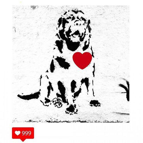 Love Dog Heart Red Black White Graffiti Tavapassando Observei FOTOGRAFEI Registrei Sampa Essepê Cachorro Branco Preto Vermelho Amor Coração Artenarua