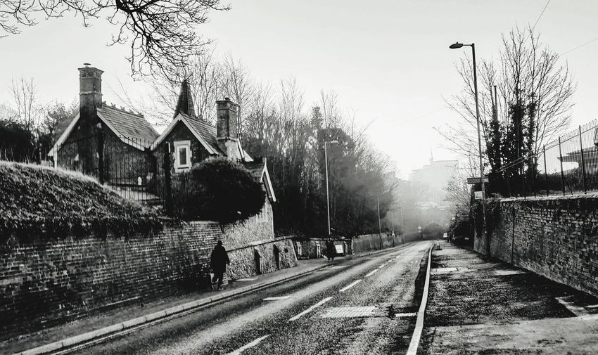 home Photowalktheworld Foggy Morning Basingstoke, UK Mobilephotography Nikonphotographer Weather Oneplus6 Blackandwhite Tree Railroad Track Winter Sky vanishing point Diminishing Perspective The Way Forward Passageway Double Yellow Line Road Marking Country Road Treelined Empty Road Train - Vehicle