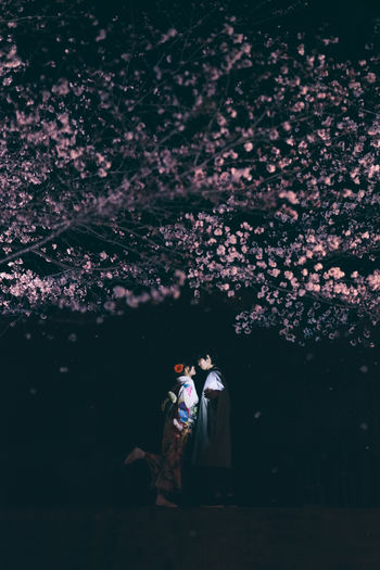 Couple Standing Under Illuminated Tree At Night