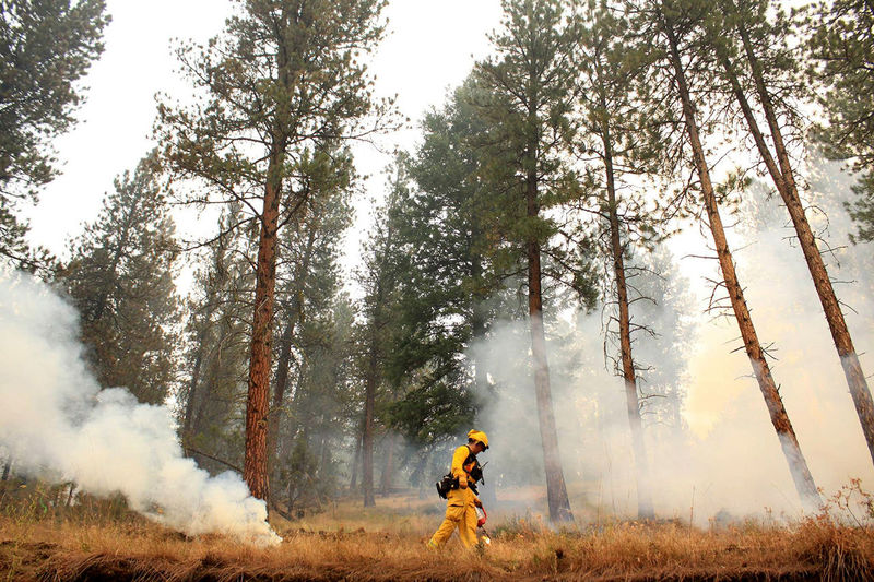 Drought Fire Firefighters Firefighters In Action Montana Oregon Wildfire Wildland Firefighting