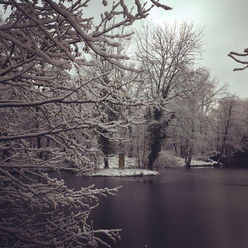 See im Schnee